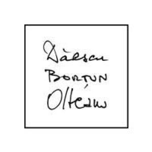 Daescu Bortun Olteanu